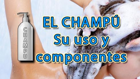 El CHAMPÚ, COMPONENTES Y CONSEJOS